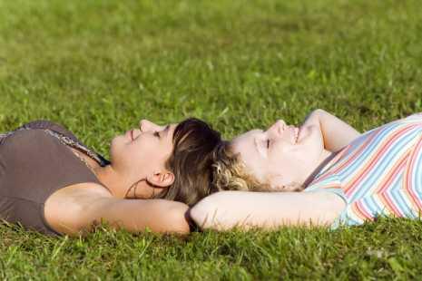 Посевной газон, зеленая трава, лужайка для отдыха